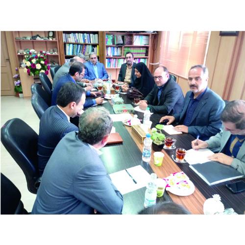 رئیس سازمان صنعت معدن و تجارت استان گیلان :  رودبار گیلان به زیتون مرغوب در سراسر کشور شهرت دارد