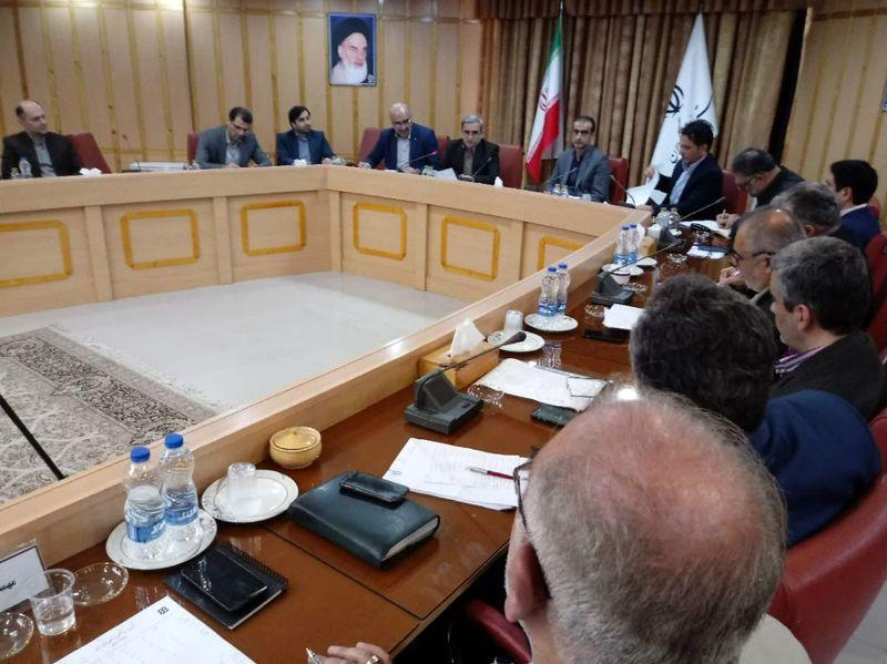 رئیس سازمان صنعت، معدن و تجارت استان گیلان:  توزیع ۴۸۵ تن گوشت منجمد و گرم در گیلان