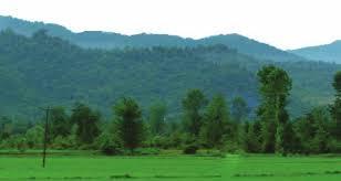 رفع تصرف ٢۵٠٠ متر مربع از اراضی تصرف شده منطقه حفاظت شده سیاهرود رودبار