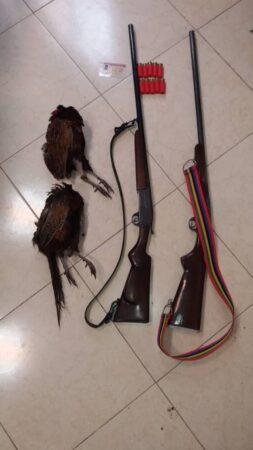 کشف و ضبط هفت قبضه سلاح شکاری به همراه دو طاقه قرقاول در سیاهکل