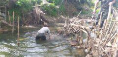 تخریب ۲۳ سد (کلهام) احداث شده در رودخانه های گیلان