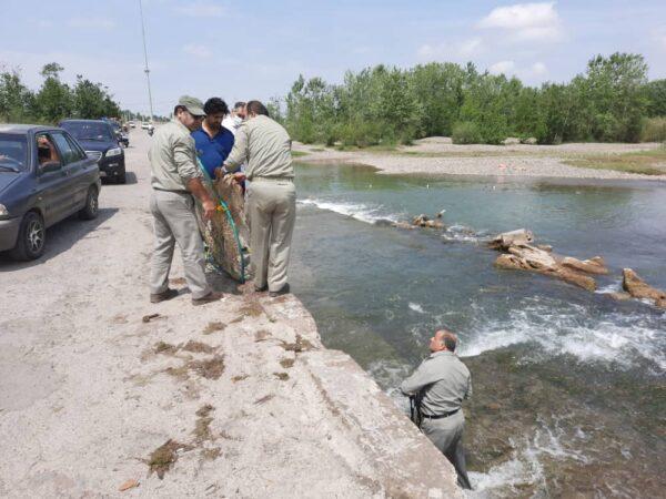 رودخانه های آستانه اشرفیه پاکسازی شد