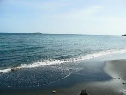 طرح های سالم سازی دریا در گیلان، پرچم سلامت می گیرند